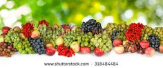 Stock Images similar to ID 380756167 - grapes on a green background...