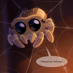 34 Best Lucas The Spider Images Lucas The Spider Spiders Hand