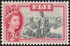 158-FIJI
