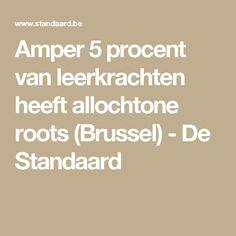 Amper 5 procent van leerkrachten heeft allochtone roots  (Brussel)  - De Standaard