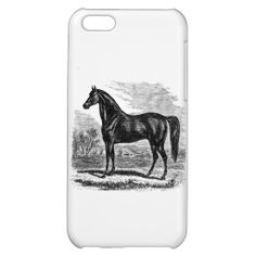 =>>Cheap          Vintage 1800s Horse - Morgan Equestrian Template Cover For iPhone 5C           Vintage 1800s Horse - Morgan Equestrian Template Cover For iPhone 5C so please read the important details before your purchasing anyway here is the best buyReview          Vintage 1800s Horse - ...Cleck Hot Deals >>> http://www.zazzle.com/vintage_1800s_horse_morgan_equestrian_template_iphone_case-256254787091571230?rf=238627982471231924&zbar=1&tc=terrest