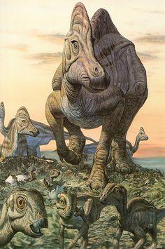 Hypacrosaurus - Mark Hallett