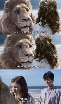 Possibly the most important line in the Narnia series. Aslan is not just a good lion. He is not an allegory of Christ. He is Christ come to Narnia in the incarnation of a Lion, just as he came to Earth in the incarnation of a man. Narnia Movies, Narnia 3, Cs Lewis, Movies Showing, Movies And Tv Shows, Citations Film, Harry Potter, Chronicles Of Narnia, The Avengers