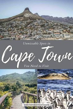 15 cool things to do in Cape Town, South Africa. From Table Mountain to Camps Bay, don't miss these awesome travel spots #travel #capetown #southafrica #wanderlust