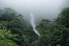 El Parque Nacional Chorro El Indio constituye el pulmón natural de San Cristóbal y referencia paisajística del Táchira en Venezuela. #Turismo #GEMED.
