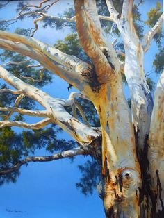 Branches of the River Red Gum Watercolor Trees, Watercolor Landscape, Landscape Art, Landscape Paintings, Watercolor Paintings, Tree Paintings, Watercolour, Australian Painting, Australian Art