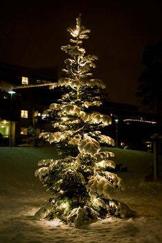 Christmas in Oslo, Norway