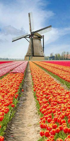 Holland #urlaub #camping