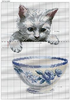 Animals-cat with bowl graph only (bbj2025) 1/1