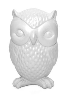 Cute owl piggy bank