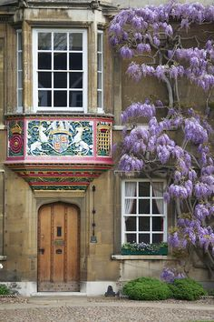 Christ's College ~ Cambridge ~ England. The Wisteria is beautiful! Oxford England, Cambridge England, England Uk, Christ College, Portal, England And Scotland, English Countryside, British Isles, Windows And Doors