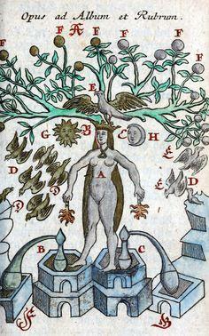 Michaelis Faustij - Compendium alchymist (1706).