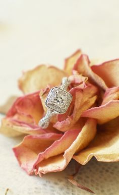 Beauty as delicate as a rose and as lasting it's message.