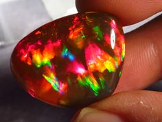 Magnificent! Ethiopian Polished Fire Opal AAA+ 66ct #222