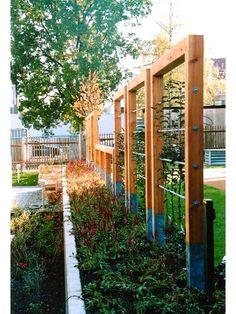 Pin by Erika Thoron on Déco jardin Veg Garden, Vegetable Garden Design, Garden Trellis, Backyard Vineyard, Espalier, Orchard Design, Backyard Playground, Backyard Projects, Garden Structures
