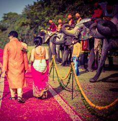 Wedding Ideas - An elephant polo match on Mehendi | WedMeGood #weddingideas #wedmegood #ideas