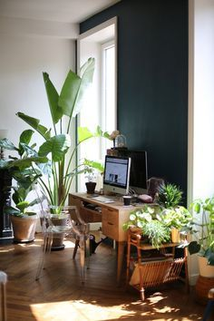 plants and a work station... http://www.leblogdebigbeauty.com/2016/08/une-jungle-chez-soi/