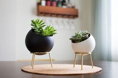 Planter with Brass Stand - GLOBE - Cactus and Succulent Planter Globe Planters - Spherical Succulent Pots Succulent Pots, Cacti And Succulents, Potted Plants, Indoor Plants, Concrete Crafts, Concrete Planters, Planter Pots, Metal Planters, Large Planters