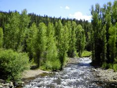 Beautiful Conejos River in the Mountains close to were I live.  Great fishing to...  Kim:).