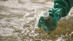 Due campioni su tre, fra quelli superficiali, contengono sostanze inquinanti. Contaminata anche una falda sotterranea su tre. Il glifosato viene ritenuto