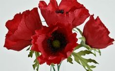 Handmade crepe paper poppies made to order. These are Remembrance Poppies or common field poppies. Used to symbolise the remembrance of lives lost in battle.