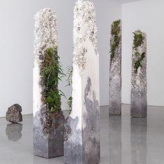 """Jamie North #design #art #sculpture #plant #plants #botanical #concrete #installation #jamienorth #artist"""