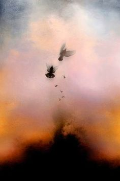 Photo Encaustic. Hmmmm, I love artistic photography, I paint with Encuastics... seems like a no brainer :)  This is a beautiful piece by the way, by Stephanie Dalton Cowan