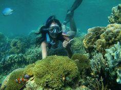 Inginku menyelamatkanmu yang tenggelam didasar lautan kerinduan.   @mureza - Pulau #Karimunjawa secara administrasi terletak di Kab. #Jepara #JawaTengah.  Pulau ini terletak di tengah #LautJawa. Jika ditarik garis secara horizontal Pulau Karimunjawa sejajar dengan #KepulauanSeribu (Jakarta) #PulauBiawak (Indramayu) #PulauBawean (Gresik) serta #PulauKangean (Madura).