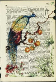 Painting or stamping on text pages. peacock reproduction printed on 75 year old by FauxKiss