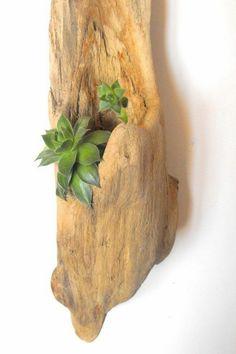 Wanddeko idées bricolage mer décoratif décoratifs idées d'artisanat