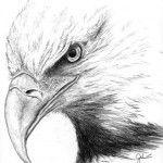 Eagle Medicine - The Great Spirit