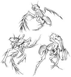 Flightless Arachnavians by thomastapir.deviantart.com on @DeviantArt