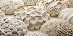 Laura McNamara Ceramics - Google  http://1.bp.blogspot.com/-eHPWZuEw5ZM/Tuib6JhiffI/AAAAAAAABxA/Mfdp5LheBAM/s1600/Laura-McNamara.jpg