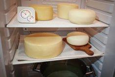 W warunkach domowych łatwo jest zrobić ser ale samo zrobienie sera to nie wszystko... Domowa dojrzewalnia sera jest w Twoim zasięgu.