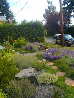 drought tolerant gardens | ... rock hues in this drought-tolerant example of designing with color