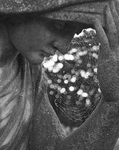Spiderweb on statue