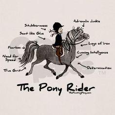Pony Rider Equestrian Shirt on CafePress.com