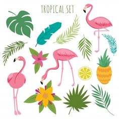 Stock Vector: Tropical vectoro set with pink flamingos, palm leaves and flowers. Jungle leaves and pineapple, palm exotic green, vector illustration - Flamingo Rosa, Flamingo Flower, Pink Flamingos, Flamingo Illustration, Vintage Graphic Design, Floral Design, Pineapple Palm, Free Vector Graphics, Eps Vector