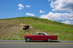 Click on the link in profile to see all the signed prints featured in the Flash Sale for a limited time. Purchase signed prints of this image of a classic red #convertible driving past a #bison by @dguttenfelder for $100 from until April 22nd in honor of #EarthDay. #classiccars #yellowstone #nps