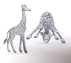 Exotic animals Giraffe lot rubber stamp unmounted stamps dies Africa travel