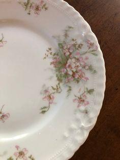 Vintage Plates, Vintage Dishes, Vintage China, Vintage Tea, Vintage Gifts, Antique China, Disney Dishes, Clay Crafts For Kids, Pink Furniture