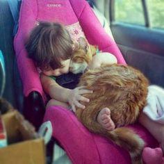 Ces 35 photographies de chats vont vous faire rire aujourd'hui