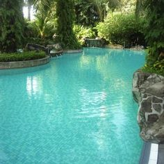 Clean your pool naturally.