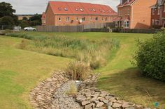 Photo: Swale with erosion control