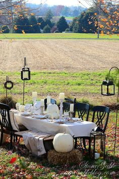 Pinner says: This would be perfect since our Thanksgivings take place at our farm and our field looks like this!!