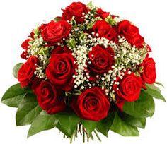 Rosas... hermosas!!