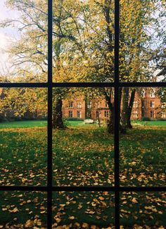 Nature and architecture  Girton College by Sarah Maclean