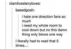 """LOL I thought they were talking about the admirers of the band called 1Direction XD I was like, """"That's so rude!"""" But then it made no sense so I had to read it like 3 more times to finally realize what they were actually talking about"""