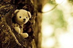 This reminds me of Winnie The Pooh. :)