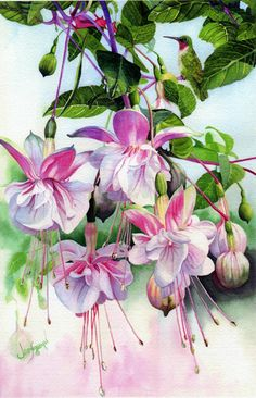 """Window on the World"" watercolor by Jane Freeman"